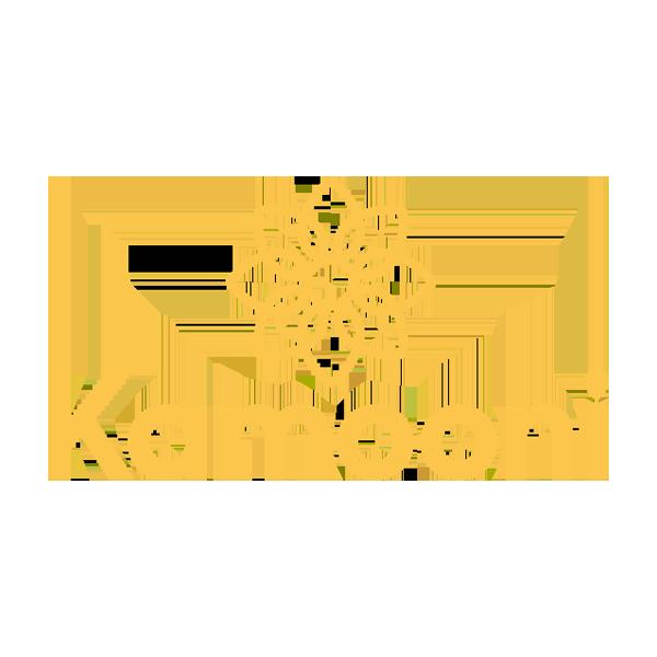 kamooni_logo